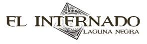 El_internado_logo